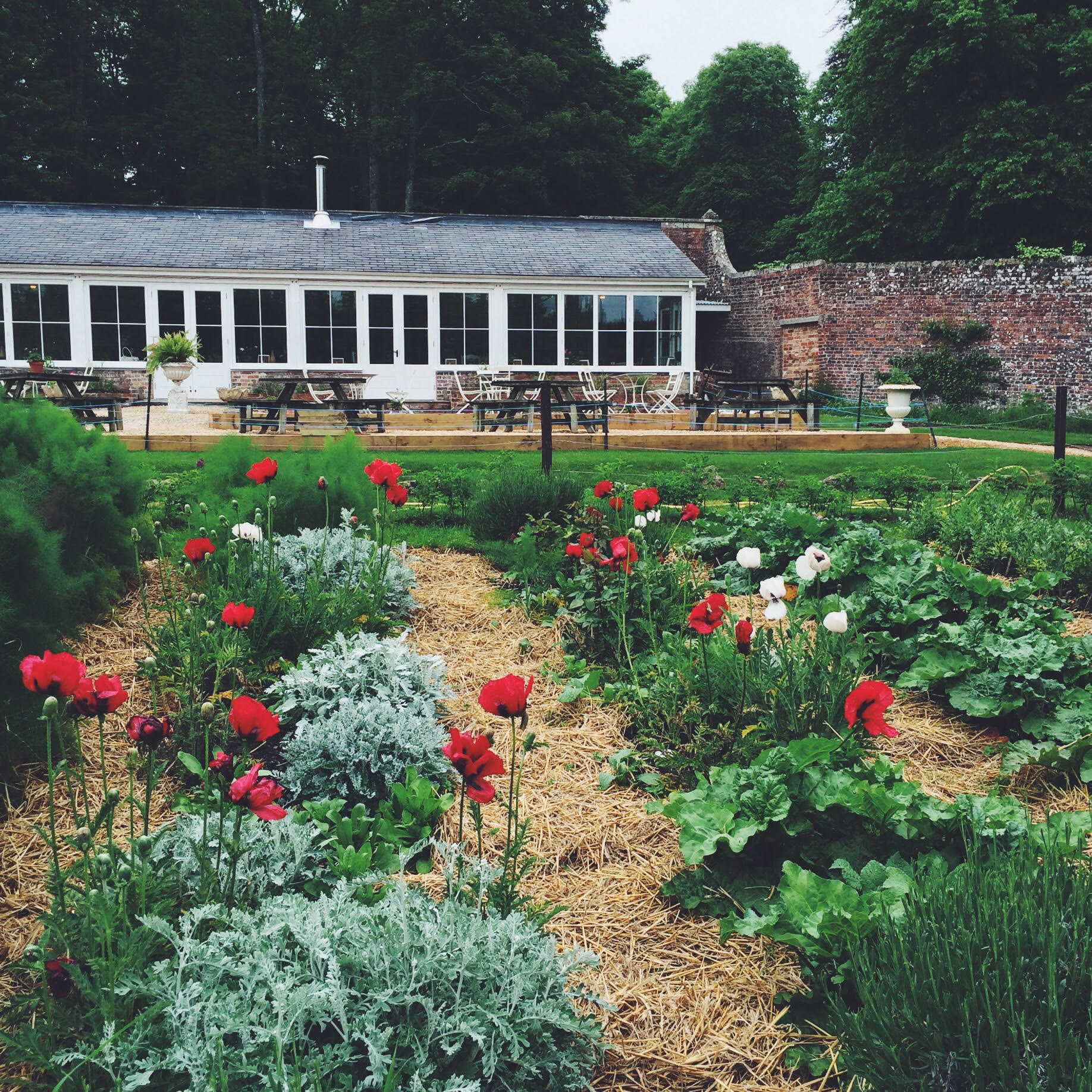 Pythouse Kitchen Garden